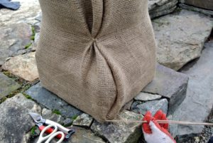 Then, the burlap is tucked underneath and several knots are made along the opening to keep it together.