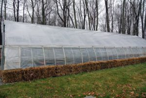 This is the hoop house across from the chicken coops - it holds many precious plants during winter. It's vital to keep the temperatures controlled during the colder months.