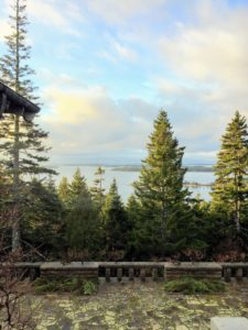 I planned to serve the truffle with dinner on Saturday after Thanksgiving. I took this photo that morning. This view is from the upper terrace of Skylands. Sutton Island is in the distance – a small, private island south of where I am on Mount Desert.