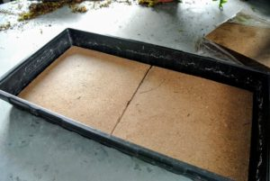 The compressed peat sheets come in pairs of squares that fit right into the tray - no cutting needed at all.