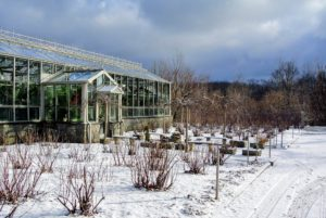 This is the front of my main glass greenhouse. I  love the sky overhead as the sun tries to peek through the clouds.