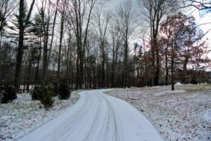 And one of the winding carriage roads, with well-planted stakes marking the path for our snow equipment and other vehicles.