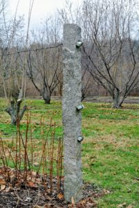 The upright posts are made of granite and they have heavy gauge copper wire laced through them to support the berry bushes.