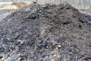 This pile is contains leaf material and composted manure, which is filled with nutrients.