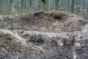 My compost piles include this dark organic matter made up of manure and biodegradable materials. It will be ready to use after it is turned and sieved.