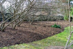 Covering the garden beds will mulch or compost will also help deter weeds. Using these materials is a wonderful way to beautify the gardens and to give back to the earth. Do you compost? Let me know in the comments section.
