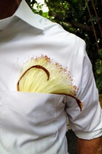 The flower in this pocket is from a Bombax ceiba, commonly known as cotton tree. More specifically, it is sometimes known as red silk-cotton, red cotton tree; or as silk-cotton or kapok. The flower lasts only 20-hours.