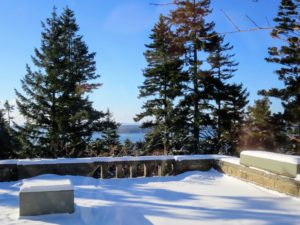 Here is the snow covered terrace looking out over Seal Harbor. Under the plywood box on the right  is a long planter carved from a single block of granite. I purchased it from Trade Secrets in 2013.
