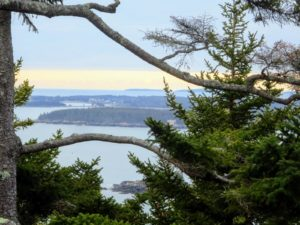 Here is another beautiful view through the branches - Sutton Island and Bear Island are two of the five Cranberry Isles; the others are Great Cranberry Island, Ilesford or Little Cranberry Island, and Baker Island.