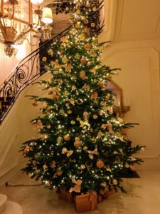And beautiful holiday trees adorned the lobby.