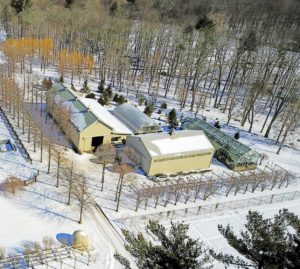 Here is a closer look at the Equipment Barn, dry hoop house, vegetable greenhouse and hay barn.  I am almost directly below the drone.