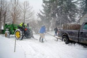 The team made sure to position the tractor, so it guided the plow out of the way of my precious Sargent crabapple trees.