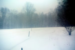 The fast-falling snow made it hard to see - I am glad the stakes delineate the roads, especially in the back fields.