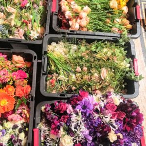 All of the flowers from the day's event were repurposed by Repeat Roses - here they are being packed up to go to the patients at The Martha Stewart Center for Living at New York City's Mount Sinai Hospital. http://www.mountsinai.org/patient-care/service-areas/geriatrics-and-aging/areas-of-care/martha-stewart-center-for-living