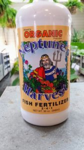 Mike uses Organic Neptune Harvest fish emulsion - made from fresh North Atlantic fish. It is made by a unique cold process that protects the vitamins, amino acids, enzymes and growth hormones.