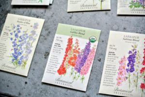 Each Botanical Interests seed packet includes a beautiful illustration of the plant, a description of its flowers, and specific blooming details. There is also a lot of information printed on the inside of the packet.