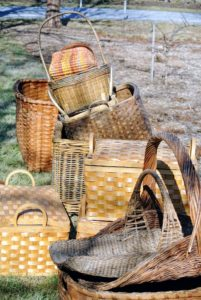 The first step was to remove the baskets, and place them outside on the dry grass. The oldest known baskets have been carbon dated to between 10-thousand and 12-thousand years old.