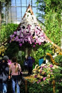 Here, orchids decorate a sala, a traditional Thai pavilion used as a meeting place for shade and relaxation.