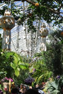 The Seasonal Exhibition Gallery features a kaleidoscope of orchids and lanterns overhead.