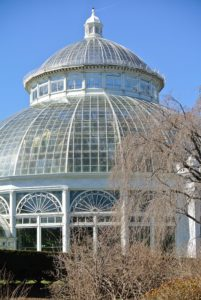 Originally constructed in 1902, the steel and glass Conservatory includes a 90-foot tall domed Palm Gallery and 10 attached glasshouse galleries.