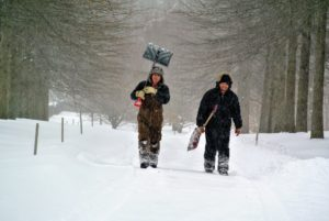Fernando and Wilmer have returned from shoveling. They cleared around every greenhouse, and the steps to every outbuilding, but the snow is falling so fast. Everything will have to be shoveled again before day's end.