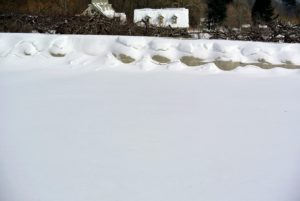 This is the herbaceous peony bed. It is surrounded with a boxwood hedge which, of course, is covered with burlap for winter protection. The wind drifts make it almost hard to identify.