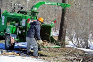 Pete helped to feed the branches into the chipper. It was a very efficient and well-paced production line process.