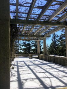 During the warmer months, hanging ferns adorn the entire perimeter of the Western Terrace.