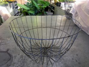 Here is one of the hanging wire baskets we use every year for our Boston ferns. It is from the greenhouse supplier Griffin, and measures 18-inches across. http://www.griffins.com