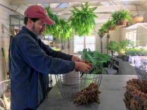 Clumps of sphagnum moss are pulled from the water and placed into the basket. Starting from the bottom, Mike creates a layer about an inch-thick.