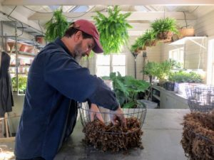 The goal is to prevent any soil from falling out, so Mike makes sure the moss lines the bottom of the basket well.