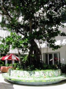 Nearby is Faena's Tree of Life - a courtyard seating area featuring this three-story tall tree.
