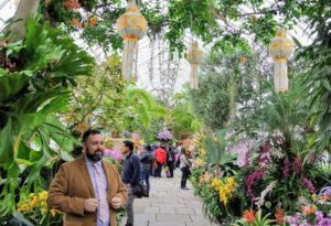 This is the Seasonal Exhibition Gallery - this year, it features a kaleidoscope of orchids, tropical plants and lanterns overhead.