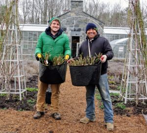 The next day, Ryan and Wilmer were all set to plant.