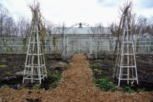 Ryan also placed roses next to the tower trellises and arbors, so they could grow up the sides as seasons pass.