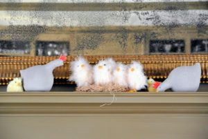 Fuzzy, white chicks decorate the mantel in my Brown room.
