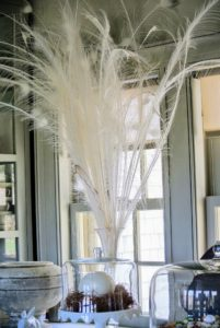 And long white tail feathers from my peacock - so gorgeous gathered and placed in a tall vase.