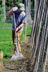 Once all the seeds are in the ground, cover them with an inch-and-a-half of soil. Ryan uses the back of a rake to also tamp the seeds gently, so there is good contact between the soil and the seeds.