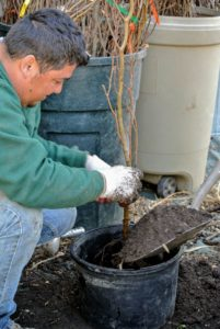 """This """"black gold"""" is made right here at my farm, and used for all my garden beds."""