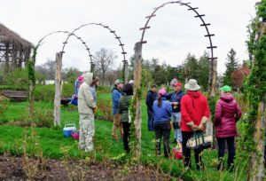 It was a cloudy and rainy day, but the group enjoyed the workshop and learned many useful rose care tips.