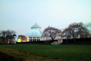 I love the archictecture of NYBG's Enid A. Haupt Conservatory. As the nation's largest Victorian glasshouse, it is among the grandest indoor spaces in the world. The Sol del Citron can be seen shining in front.