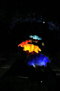 Macchia Forest appears molten, especially when illuminated at night. The 1981 Macchia Series was inspired by all the colors available in Chihuly's studio.