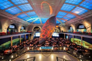 The American Museum of Natural History in New York City is among the largest in the world and contains more than 33-million specimens of plants, animals, fossils, minerals, rocks, and other artifacts. In the center is a 94-foot long, 21,000-pound fiberglass model of a female blue whale. (Photo by Culinary Institute of America/Phil Mansfield)