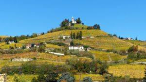 These wines come from family-owned vineyards located in the world's finest wine regions. This is the Santero Family vineyard on the site of an old abbey in the Piedmont region of Italy.