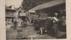 This is a vintage photo of workers from the Abbazia winery.