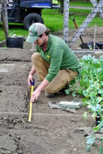 Ryan measures each bed to assess how many rows of each vegetable can be planted in the space. He takes into consideration the amount of plants and the size of the vegetables when mature.