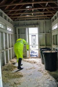Each coop has four sets of nesting boxes each containing 10-nesting compartments. They were all stripped from the walls, and all the wooden shavings swept off the floor.
