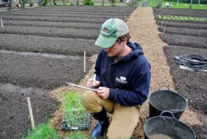 Ryan creates markers for all the onion varieties, so they're easily identified throughout the season.
