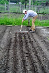 Ryan goes over several beds, planning exactly where each crop will go.