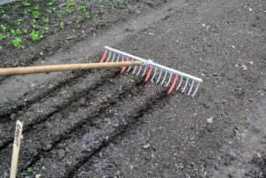 It's a cleverly designed tool for making multiple straight rows in one pass. The depth of the furrows depends on the amount of pressure placed on the rake as it moves through the soil.